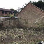Garden Maintenance in Tunbridge Wells