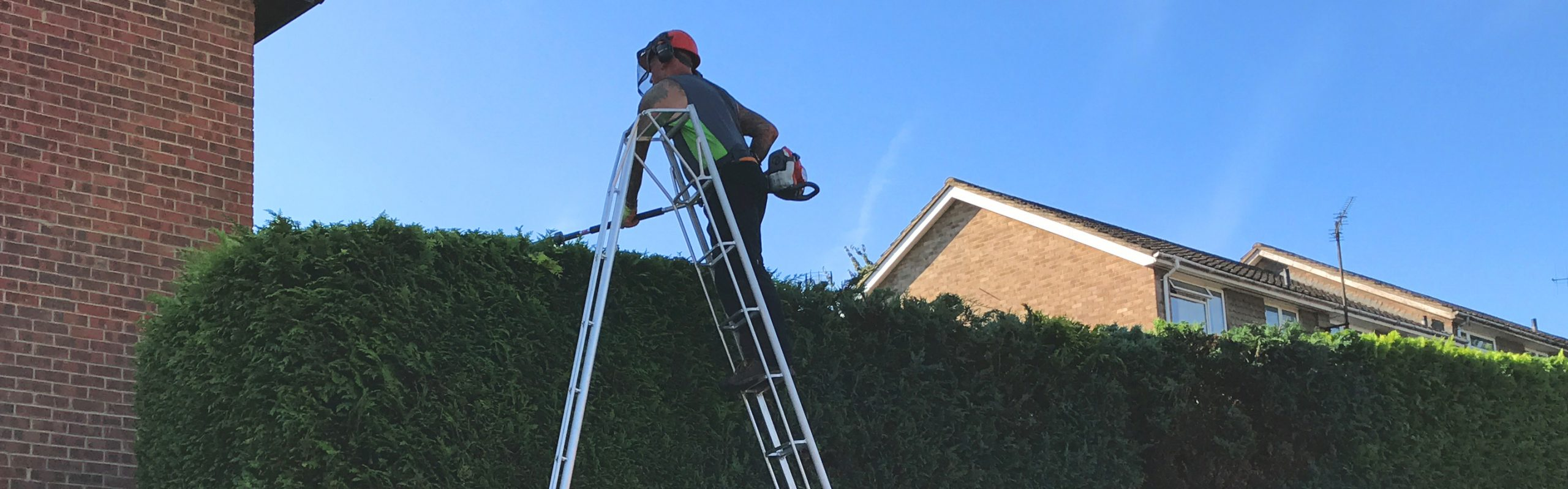 Tree Surgeon Maidstone
